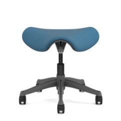 Saddle Seat Chairs Reviews T Cushion Chair Slipcover Ergonomic Stool Shop Stools The Humanscale Freedom Pony Comes In A Wide Range Of Color Options