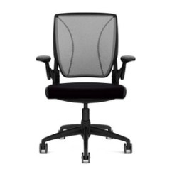 Different World Chair Kid Sized Chairs Humanscale Shop Ergonomic And Office Diffrient Standard Configurations
