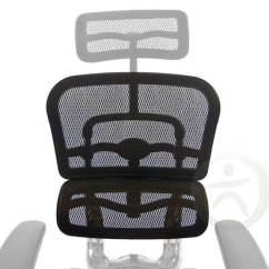 Raynor Ergohuman Chair Folding In Chennai Replacement Mesh Back For Me7erg Me8erglo And Swap Out Replace Your With The