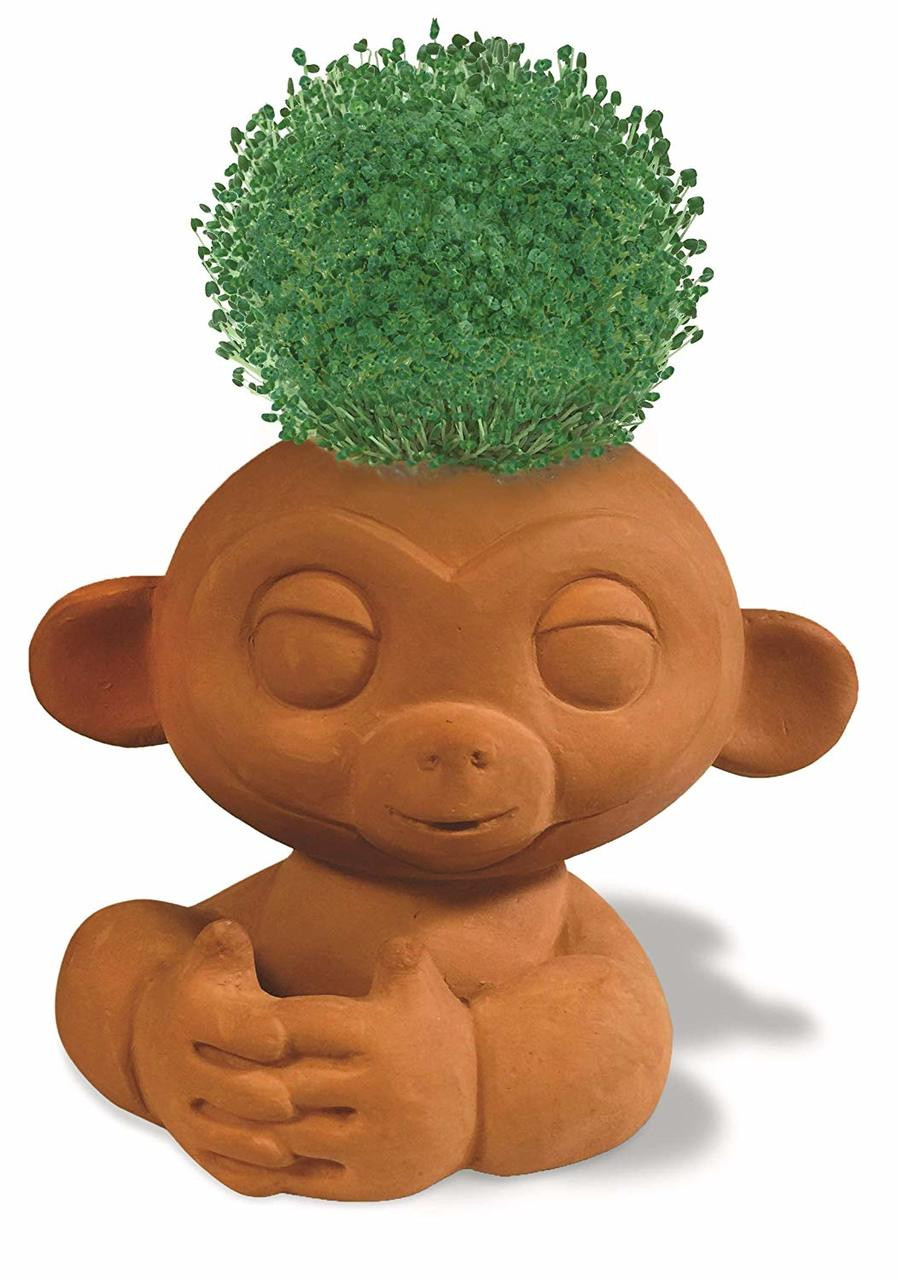 Find and follow posts tagged chia pets on Tumblr