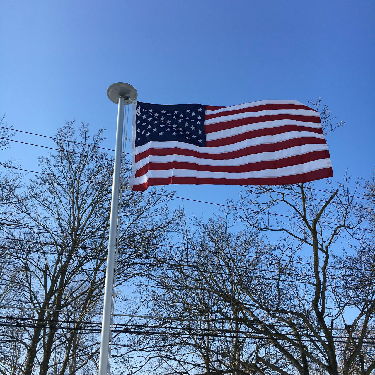 poly max american flag