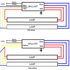 Hps Ballast Wiring Diagram Basic Motor Control Sunpark Sl15t Electronic Replacement Label Two Linear Tube