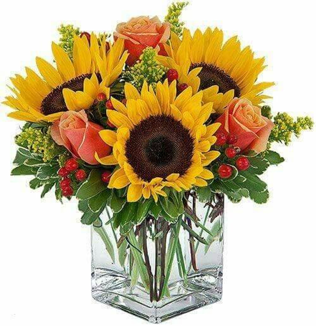 cheerful sunflowers best seller