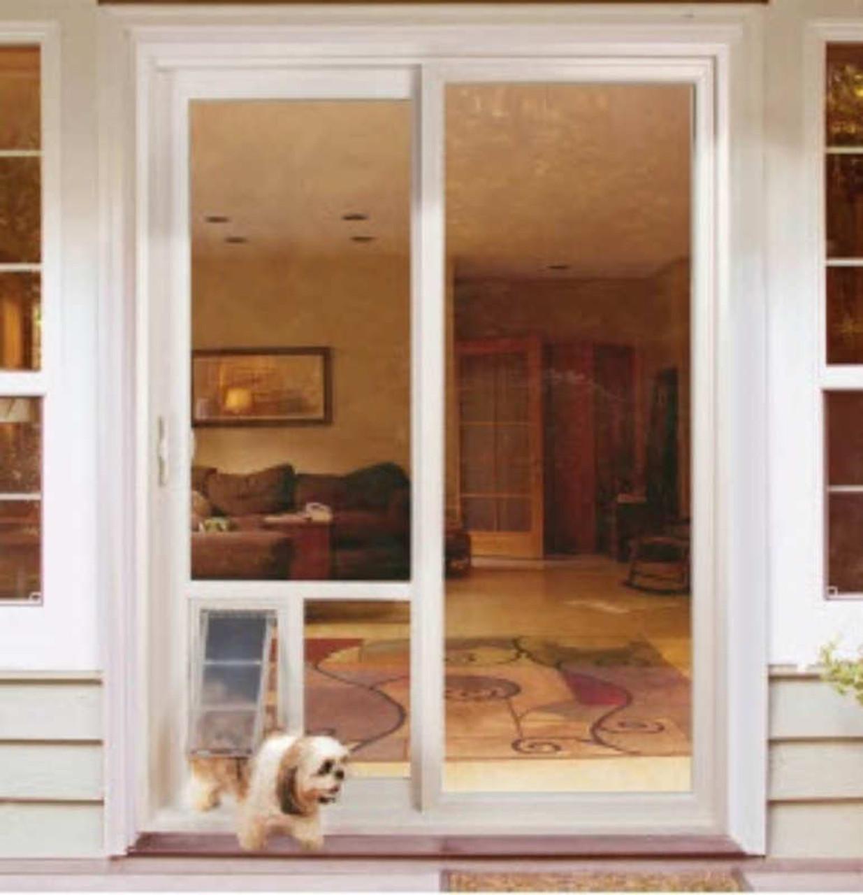 pet door guys through glass doggy door