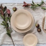 Biodegradable Bamboo Plates Set Of 8 Eartheasy Com