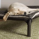 Kuranda Dog Beds Chew Proof Dog Beds