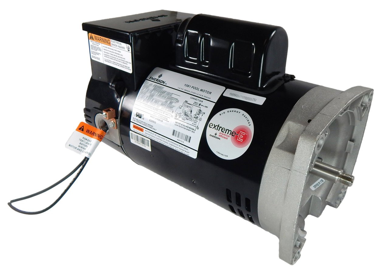 small resolution of 2 hp 2 speed 56y frame 230v square flange pool motor with timer us electric motor eb2984t