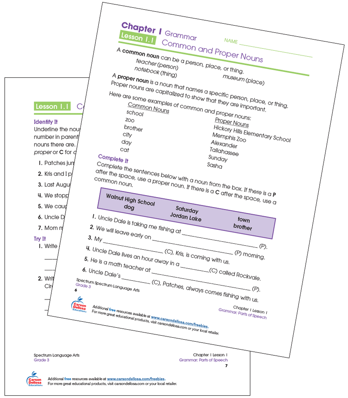 small resolution of Common and Proper Nouns Grade 3 Free Printable   Carson Dellosa