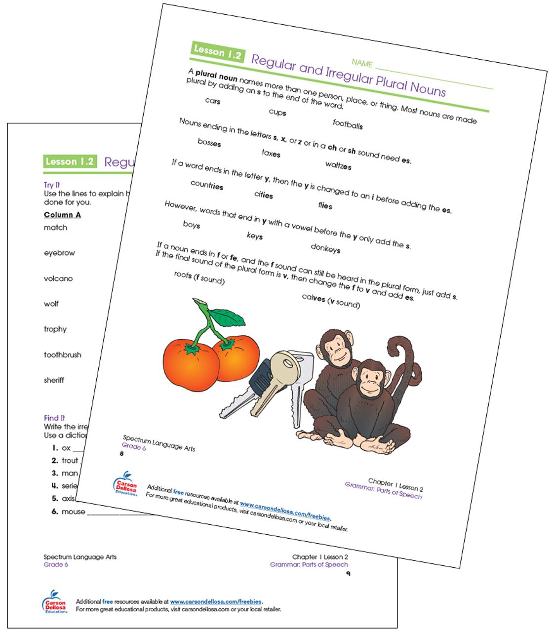 Regular and Irregular Plural Nouns Grade 6 Free Printable   Carson Dellosa [ 1280 x 1120 Pixel ]