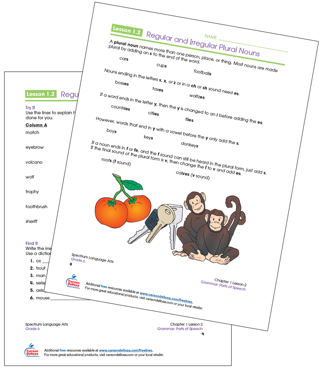 hight resolution of Regular and Irregular Plural Nouns Grade 6 Free Printable   Carson Dellosa
