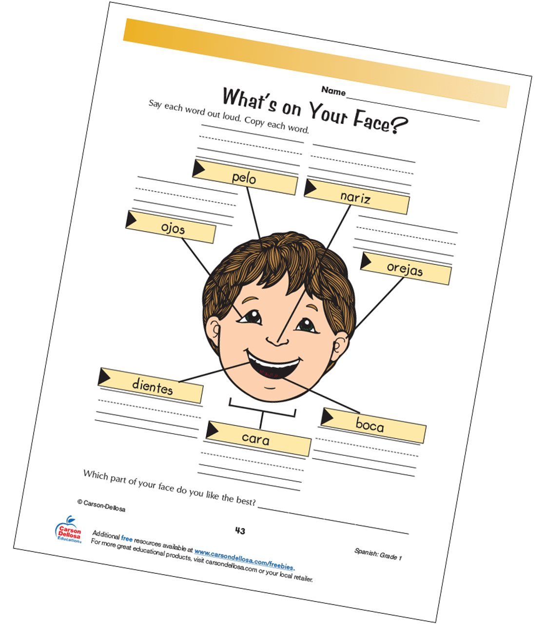 hight resolution of Parts of the Face Grade 1 Spanish Free Printable   Carson Dellosa