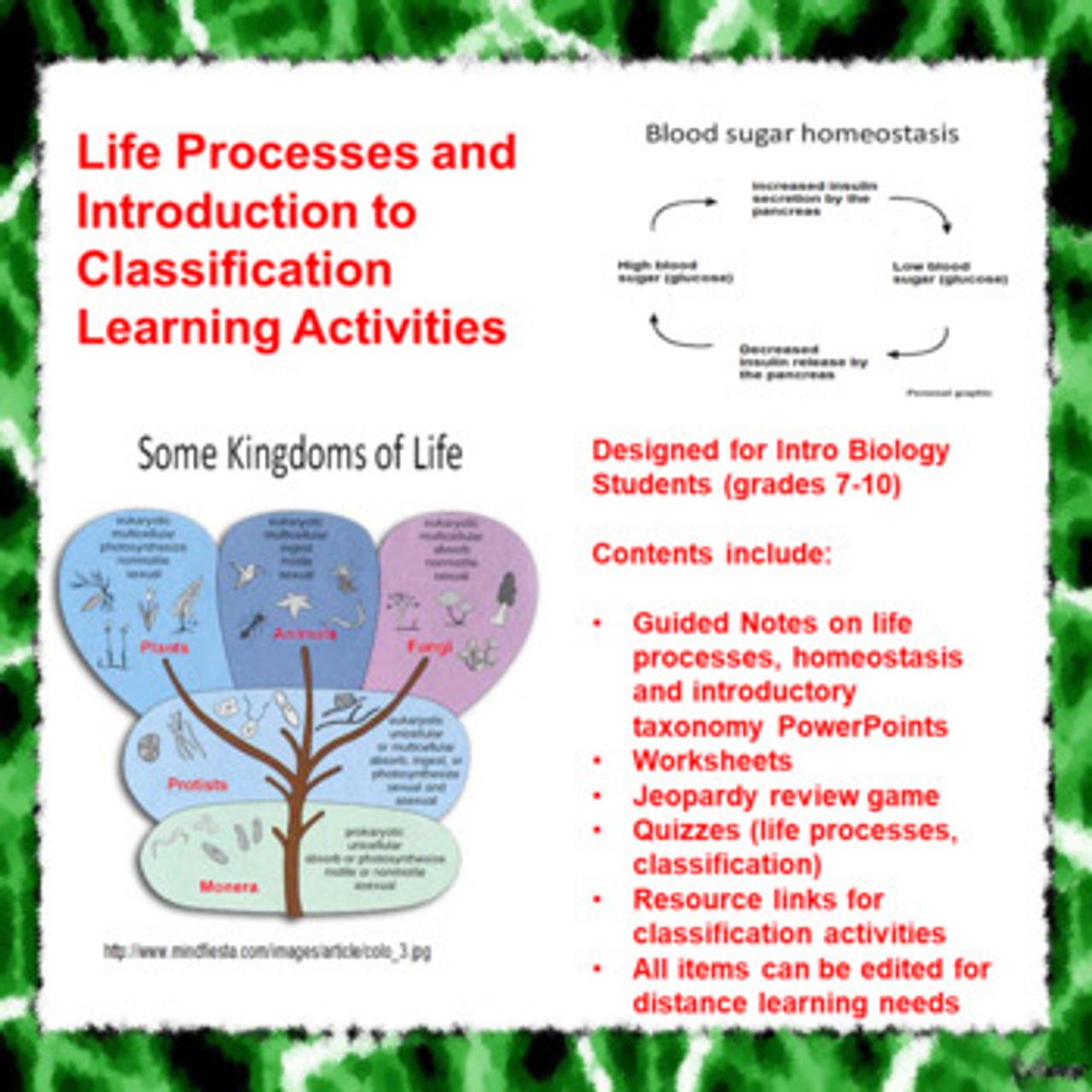 hight resolution of Life Processes/Intro to Classification Learning Activities (Distance  Learning)