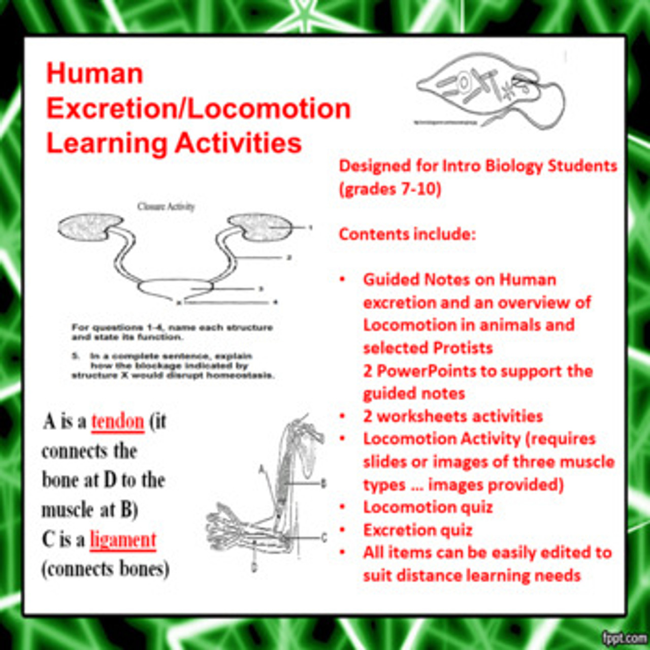 hight resolution of Human Excretion/Locomotion Learning Activities (Distance Learning)