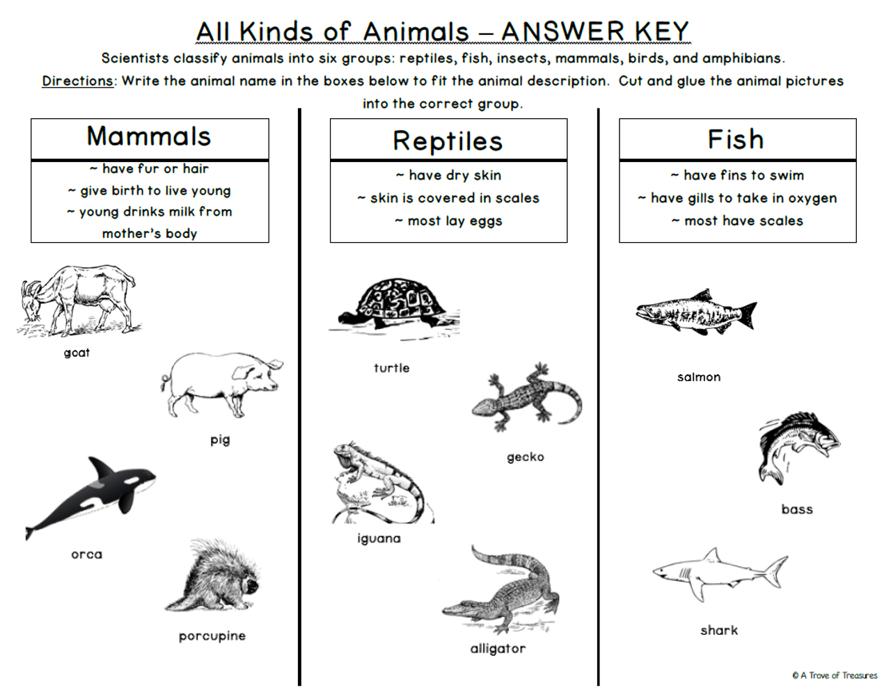 Animal Groups Classification Mega Pack - Amped Up Learning [ 992 x 1280 Pixel ]