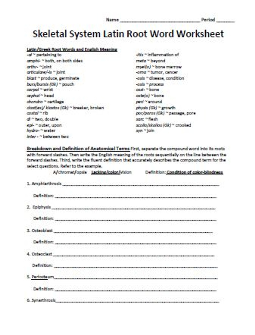 Skeletal System Latin Root Word Worksheet - Amped Up Learning [ 1280 x 976 Pixel ]