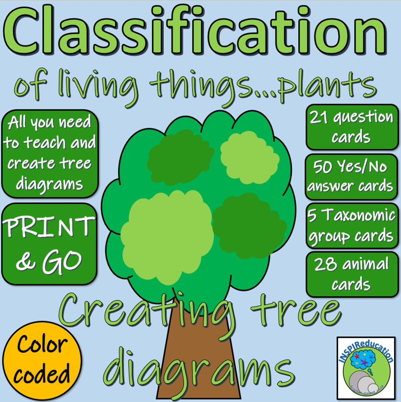 hight resolution of Classification of Green Plants - Decision Trees (Yes/No) Questions - Branch  diagrams - Amped Up Learning