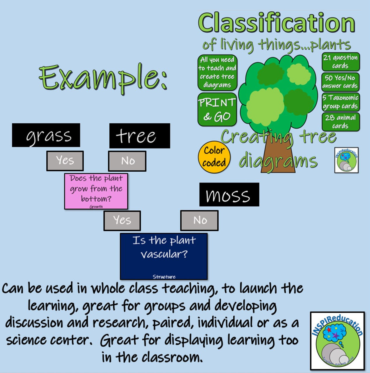 Classification of Green Plants - Decision Trees (Yes/No) Questions - Branch  diagrams - Amped Up Learning [ 1280 x 1269 Pixel ]