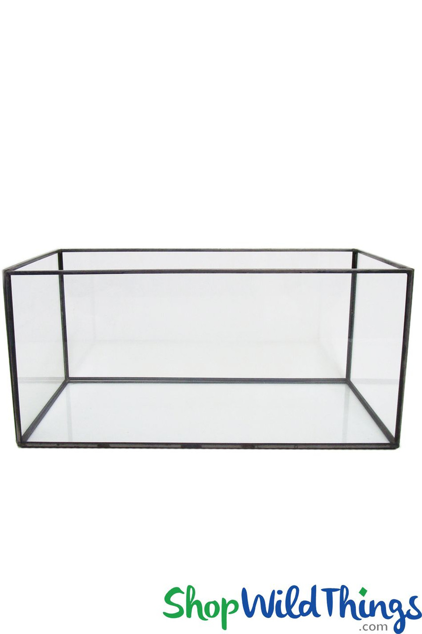 Stackable Rectangular Terrariums Clear Glass With Gold Or Black Trim Shopwildthings Com