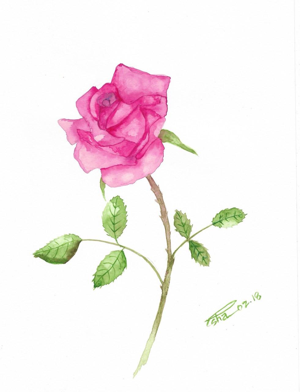 pink rose art 4123