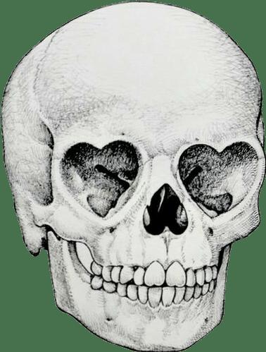 Skull Tumblr Holga Sticker By Sandra