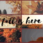 Autumn Fall Aesthetic Image By Luna
