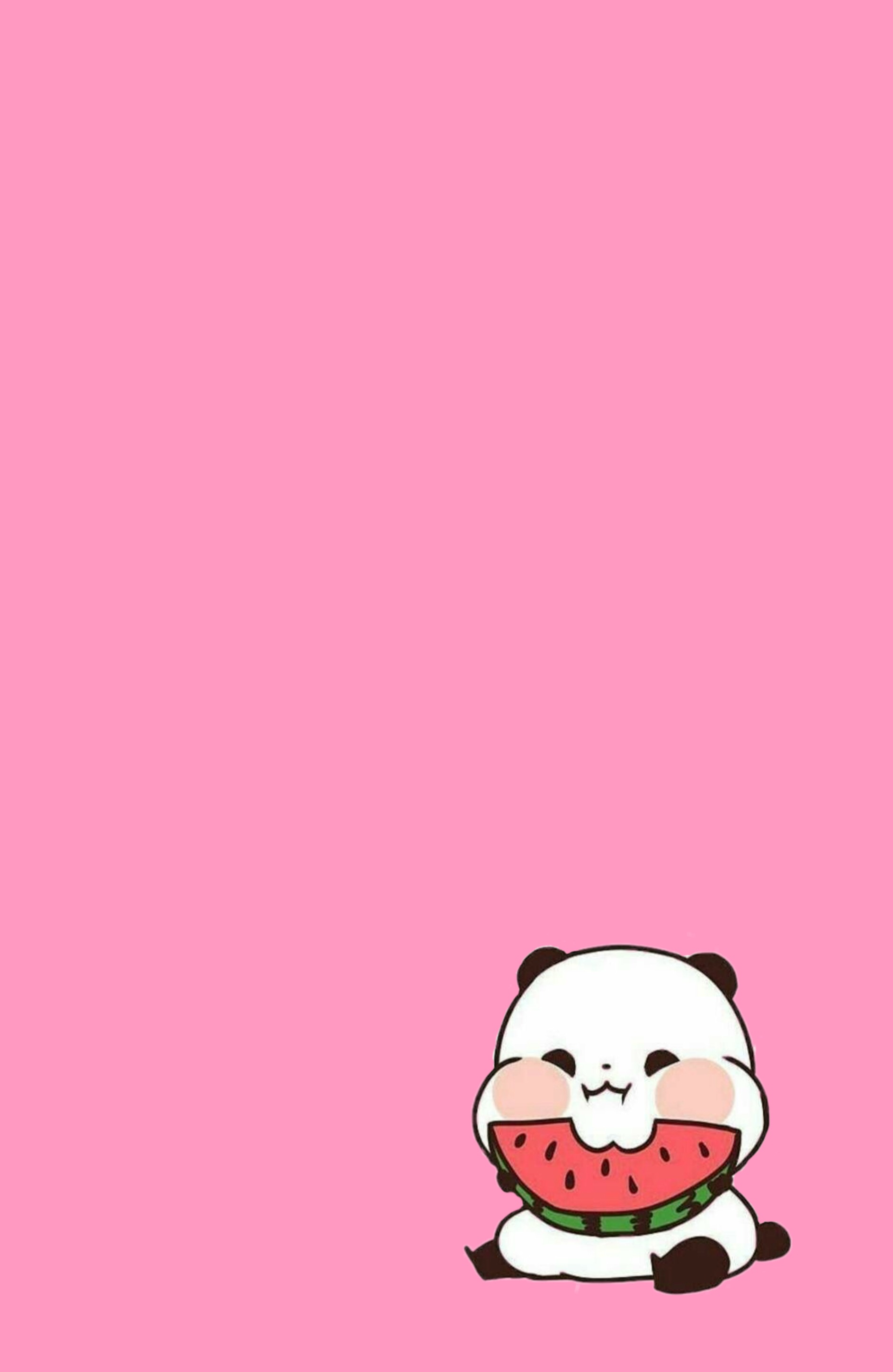 Cute Bts Wallpapers Wallpapers Heres A Cute Panda Eating A Watermelon With
