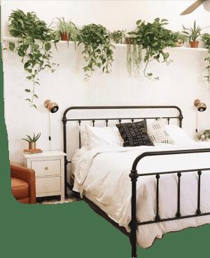aesthetic bedroom plants bed plant picsart sticker pretty aesthetics