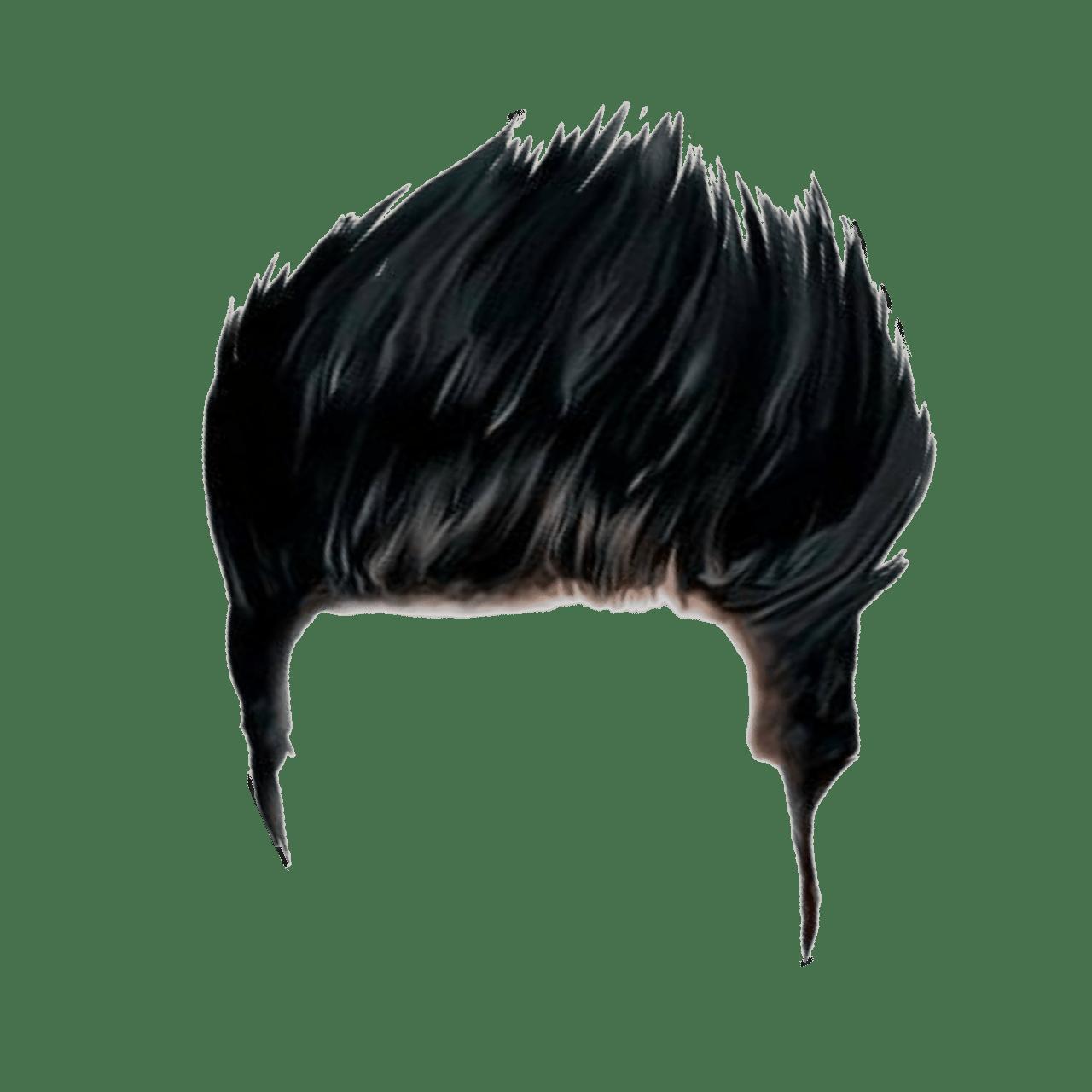 Hairstyle Hairart Haircolor Long Hair Haircut Hairpng
