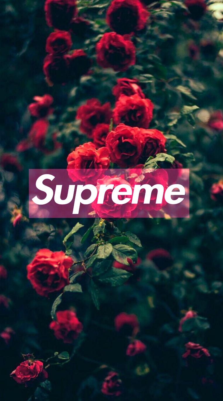 Iphone X Collage Wallpaper Supreme Rose Fine Image By Zimoloanna8