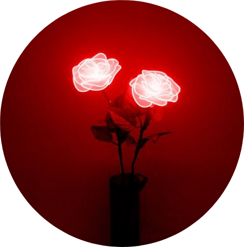 tumblr aesthetic red roses