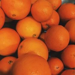 fruit orange citrus orange aesthetic Image by nat