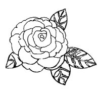 Disegno di Rosa da Colorare - Acolore.com