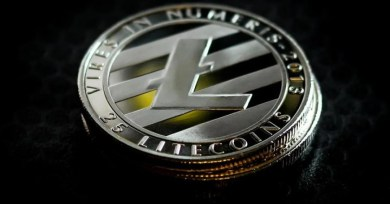 Will Litecoin Or Dogecoin Grow More By 2022?