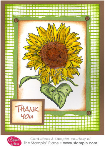 Thank You Sunflower Card Ideas Amp Samples Rubber Stamps