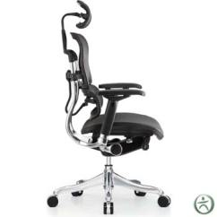 Raynor Ergohuman Chair Are Sit Me Up Chairs Good For Babies Ergo Elite With Headrest Me22erglt Features Eurotech Ergoelite Side350 Jpg