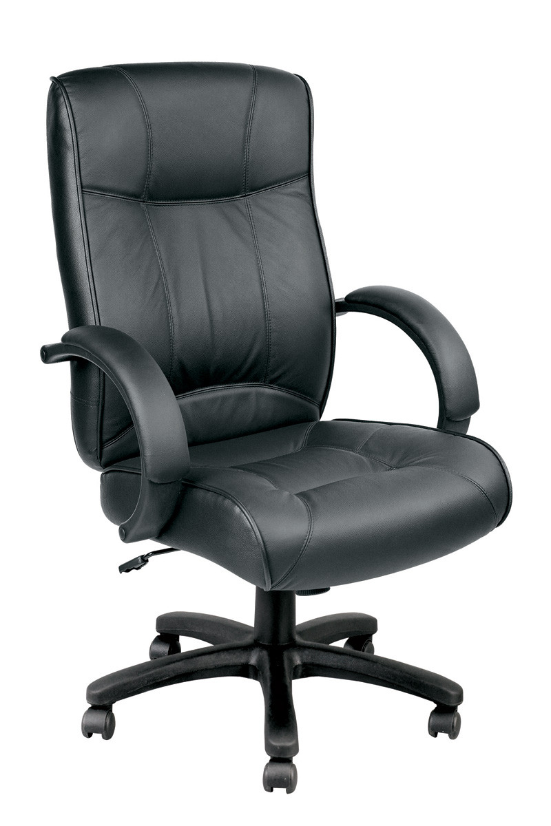 Eurotech Odyssey Executive Leather HighBack Chair LE9406