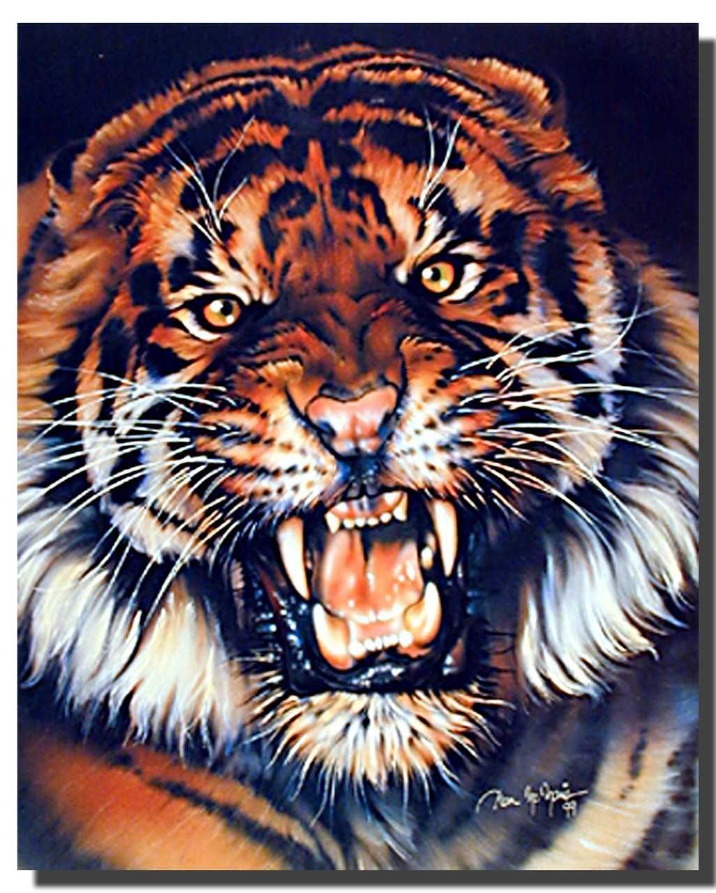 Growling Tiger Poster Animal Posters