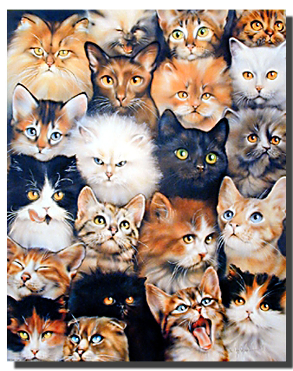 Cat Collage Poster Animal Posters