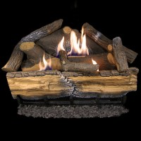 Cedar Ridge Hearth Recon 24-in 32,000-BTU Dual-Burner ...