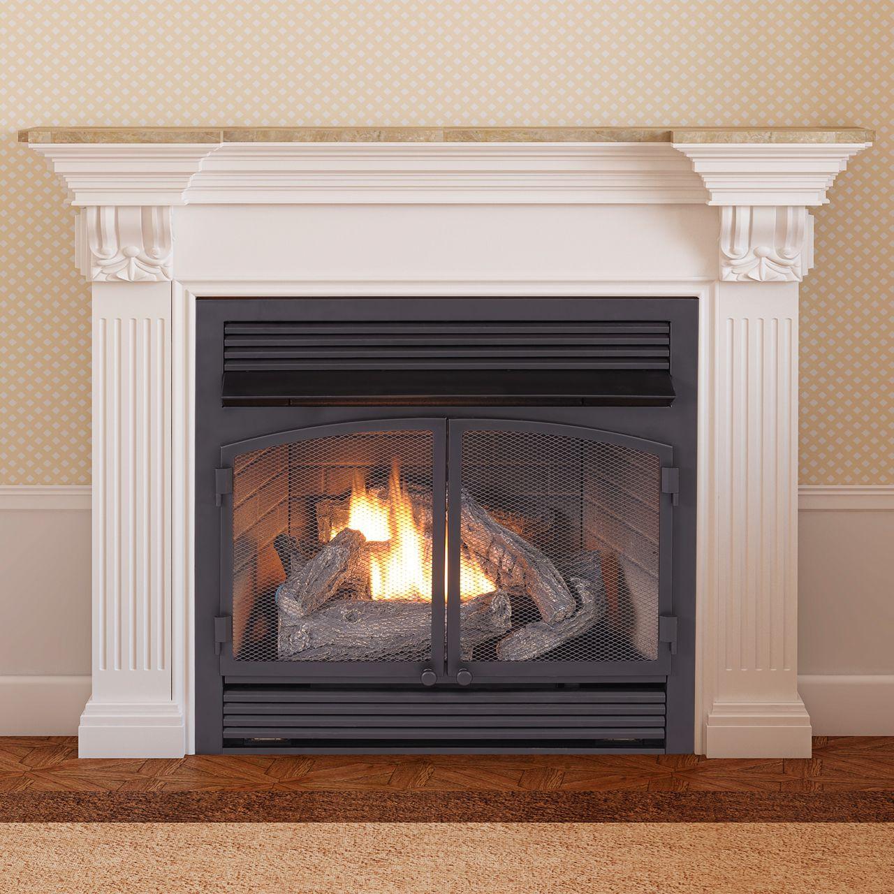 Ventless Gas Fireplace Insert  Bruin Blog
