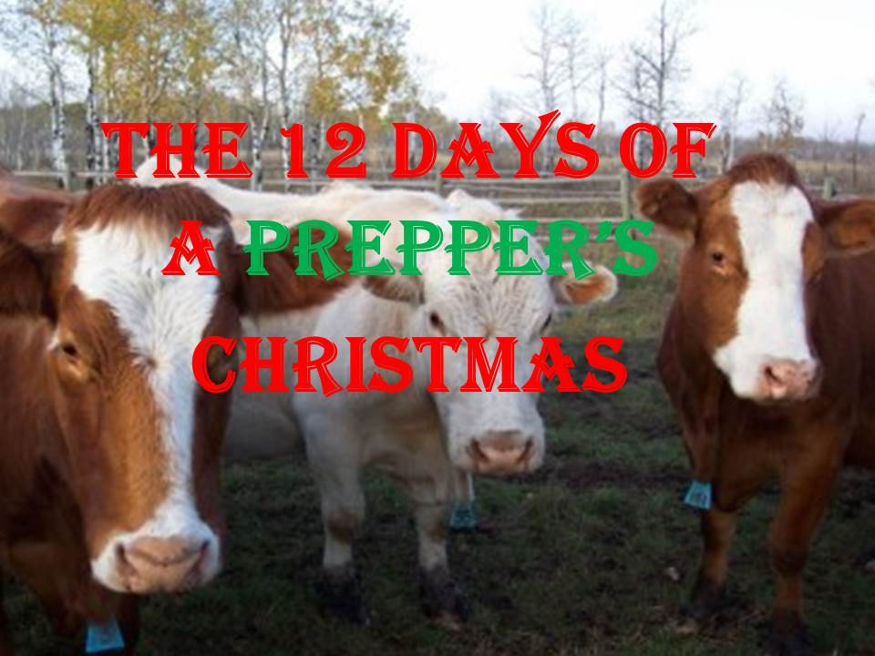 kitchen stoves for sale chinese knife the 12 days of a prepper's christmas - dba- gear up center ...