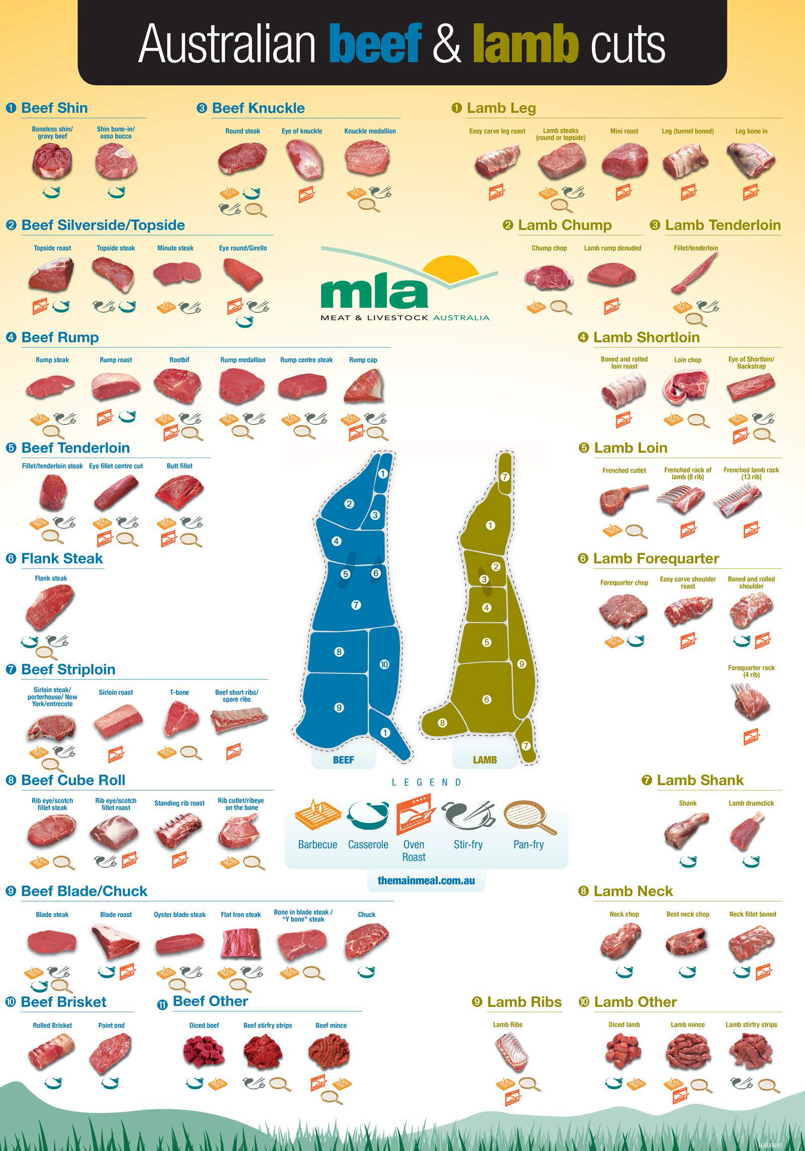 hight resolution of beef and lamb cut chart