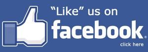 facebook-like_klein