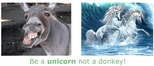 be a ppc unicorn