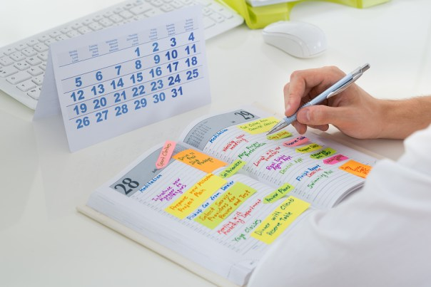 schedule your content