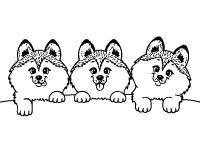 Dibujo de 3 perritos para Colorear - Dibujos.net