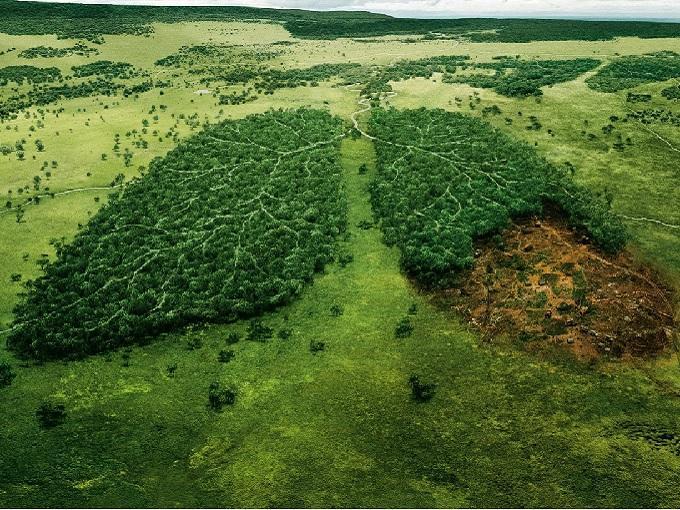 Ya explotamos todos los recursos naturales disponibles