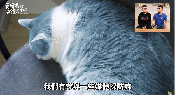 貍貓爆「阿瑪不是橘貓!」多年修片技巧曝光 網驚:是哆啦A夢 | ETtoday寵物動物 | ETtoday新聞雲