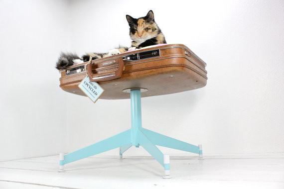 回收舊皮箱、舊電腦 打造時尚貓床-第6張 | ETtoday圖集 | ETtoday新聞雲