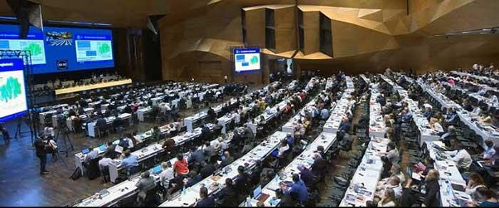 El Comité del Patrimonio Mundial de la UNESCO reunido en Bakú, Azerbaiyán votó este miércoles a favor de inscribir las Islas y Áreas Protegidas del Golfo de California en la Lista del Patrimonio Mundial en Peligro. Foto: Especial